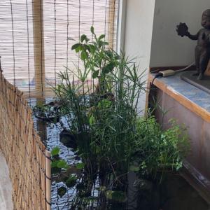 岡山市中区保育園様